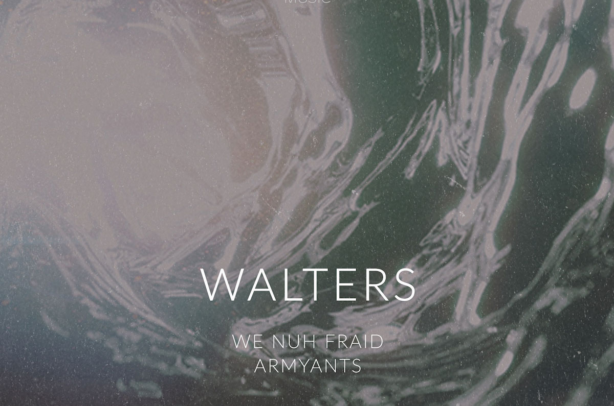 REFORM003  - Walters 'We Nuh Fraid / Armyants'